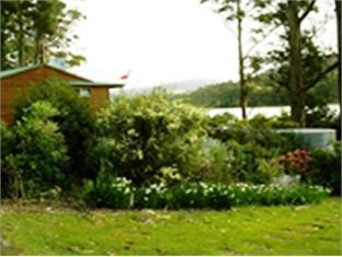 Classic Cottages Port Arthur - More photos