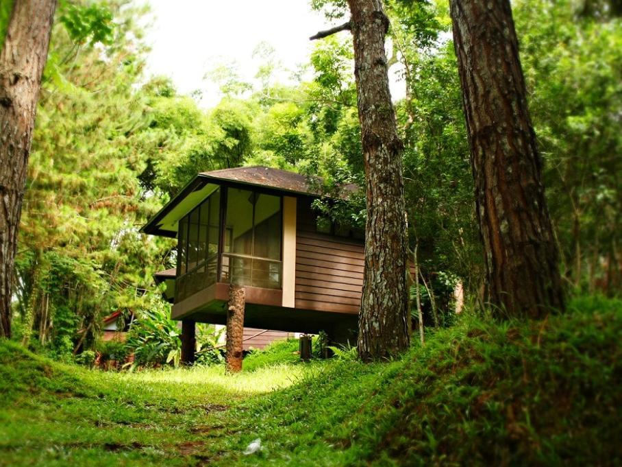 Eden Nature Park and Resort - Hotels and Accommodation in Philippines, Asia