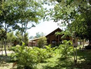 Lago Hotel Tibau do Sul - Surroundings