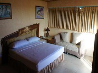Manila Airport Hotel Manila - Külalistetuba