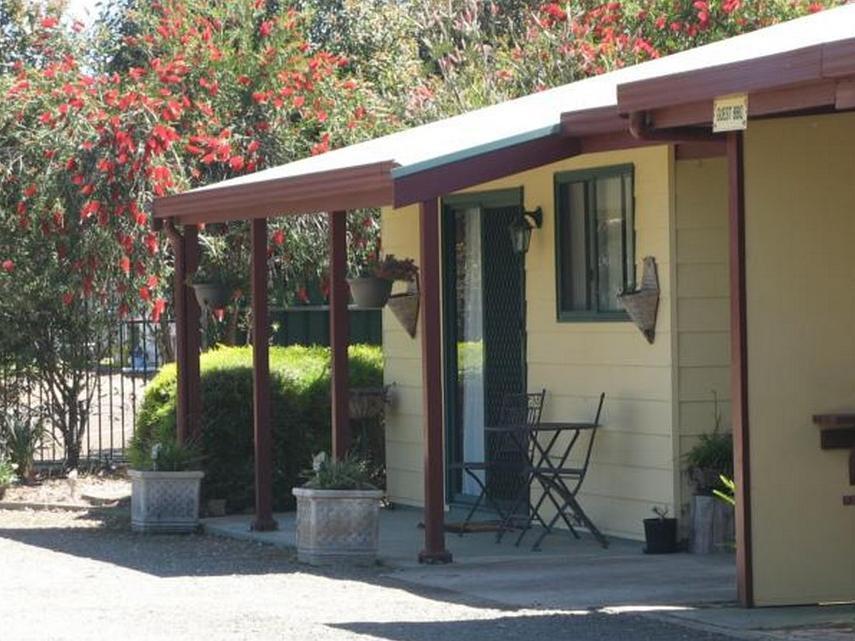 Hotell Ficifolia Lodge