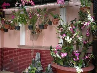 Thien Vu Hotel Ho Chi Minh City - Small garden