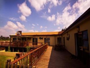 Moafrika Lodge Johannesburg - Hotel Exterior