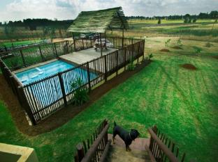 Moafrika Lodge Johannesburg - Swimming Pool