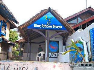 Blue Ribbon Divers & Sunsplash Resort - More photos
