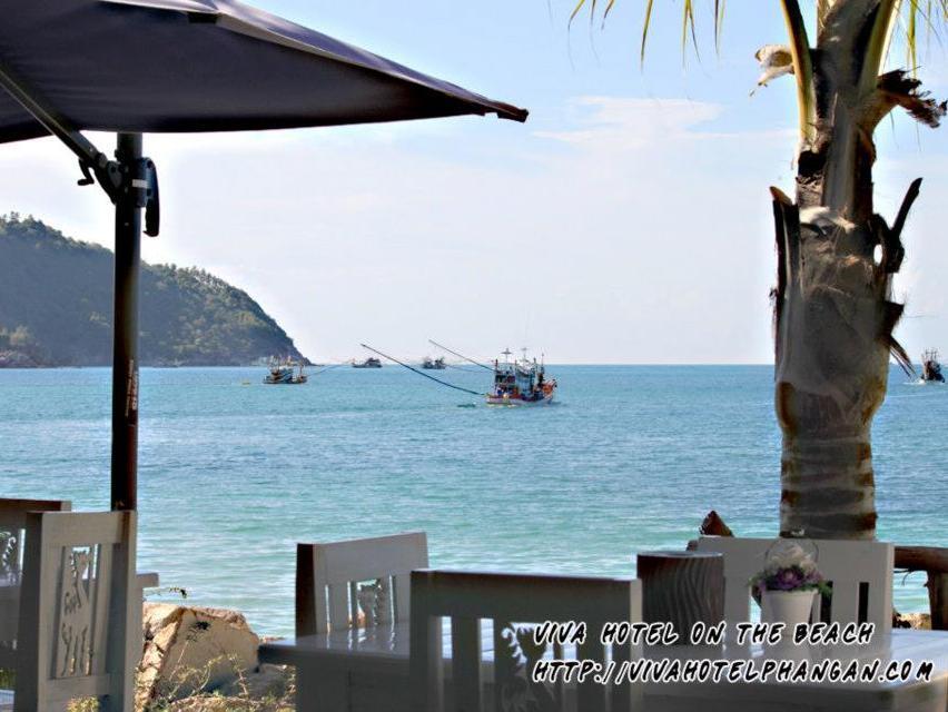 Viva On The Beach Hotel