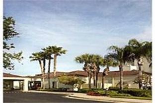 Courtyard Tampa Westshore Airport Hotel