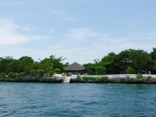 Talima Beach Villas & Dive Resort Cebu - Strand