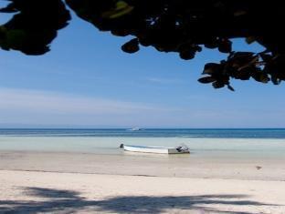 Ocean Avenue Dive Resort - More photos