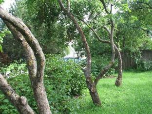 Kaevu Holiday House פרנו - גינה