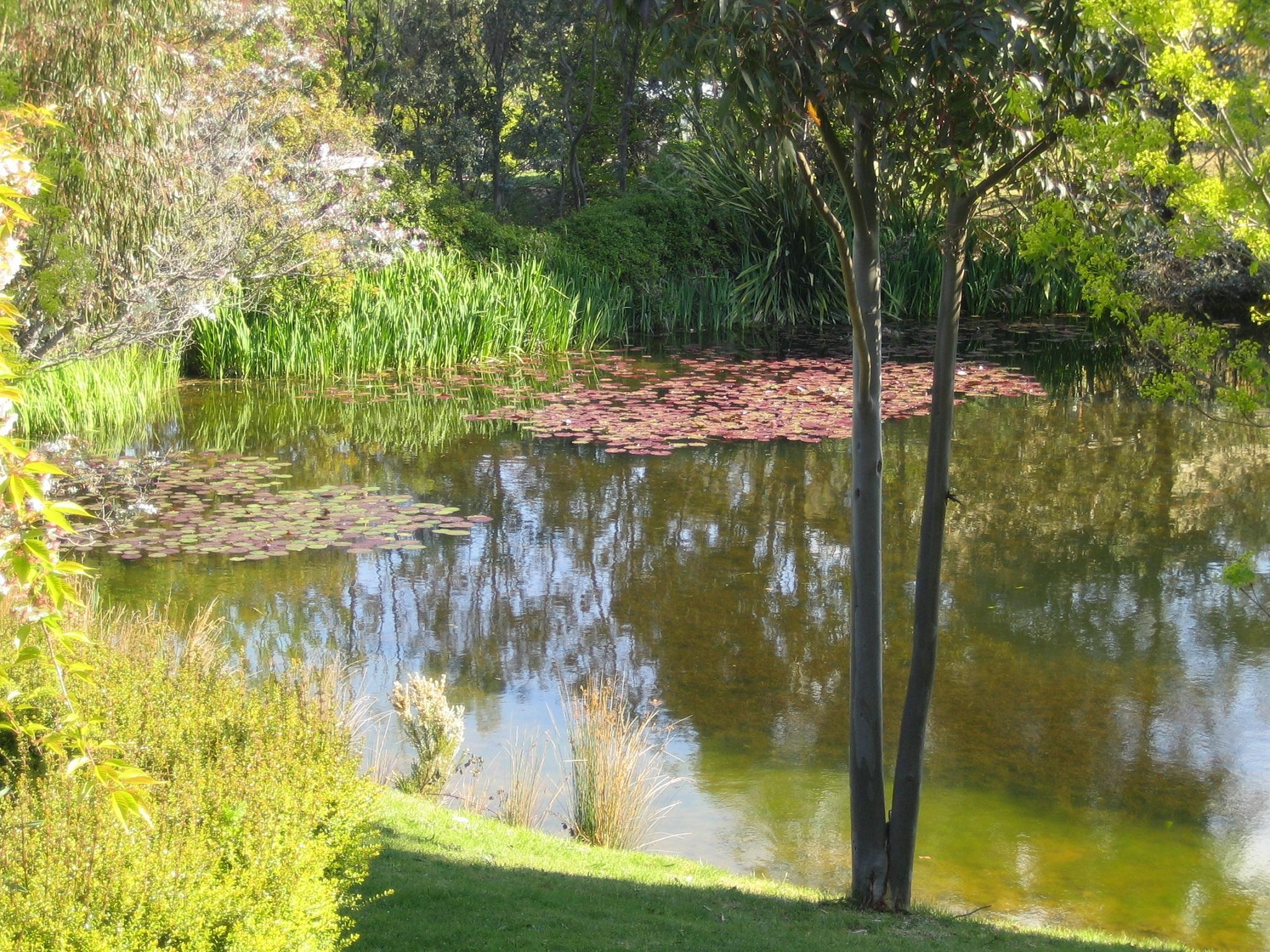 Balconies Daylesford - Hotell och Boende i Australien , Daylesford and Macedon Ranges