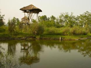 Maruni Sanctuary Lodge Εθνικό Πάρκο Τσίτβαν - Εξωτερικός χώρος ξενοδοχείου