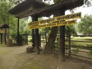 Maruni Sanctuary Lodge גן לאומי צ'יטובאן - מתקנים לפעילות פנאי