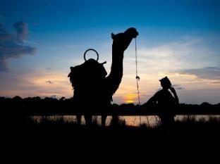 Maruni Sanctuary Lodge Chitwan National Park - Camel Safari