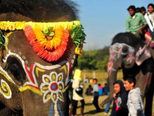 Maruni Sanctuary Lodge Chitwan National Park - Elephant Festival
