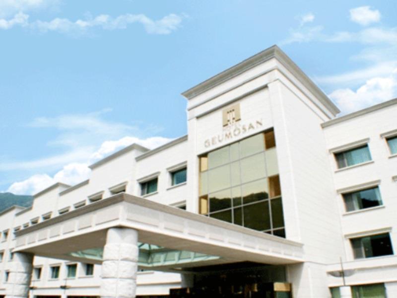 Hotel Geumosan Gumi - Habitación