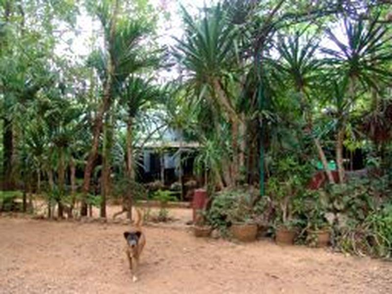 Sam's Jungle Guesthouse - Hotels and Accommodation in Thailand, Asia