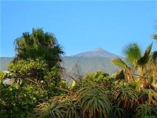 Hotel Trianflor Tenerife - View