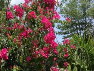 Exclusive Bali Bungalows Bali - Garden