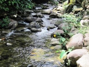 Damai Lembah Bujang Homestay - More photos