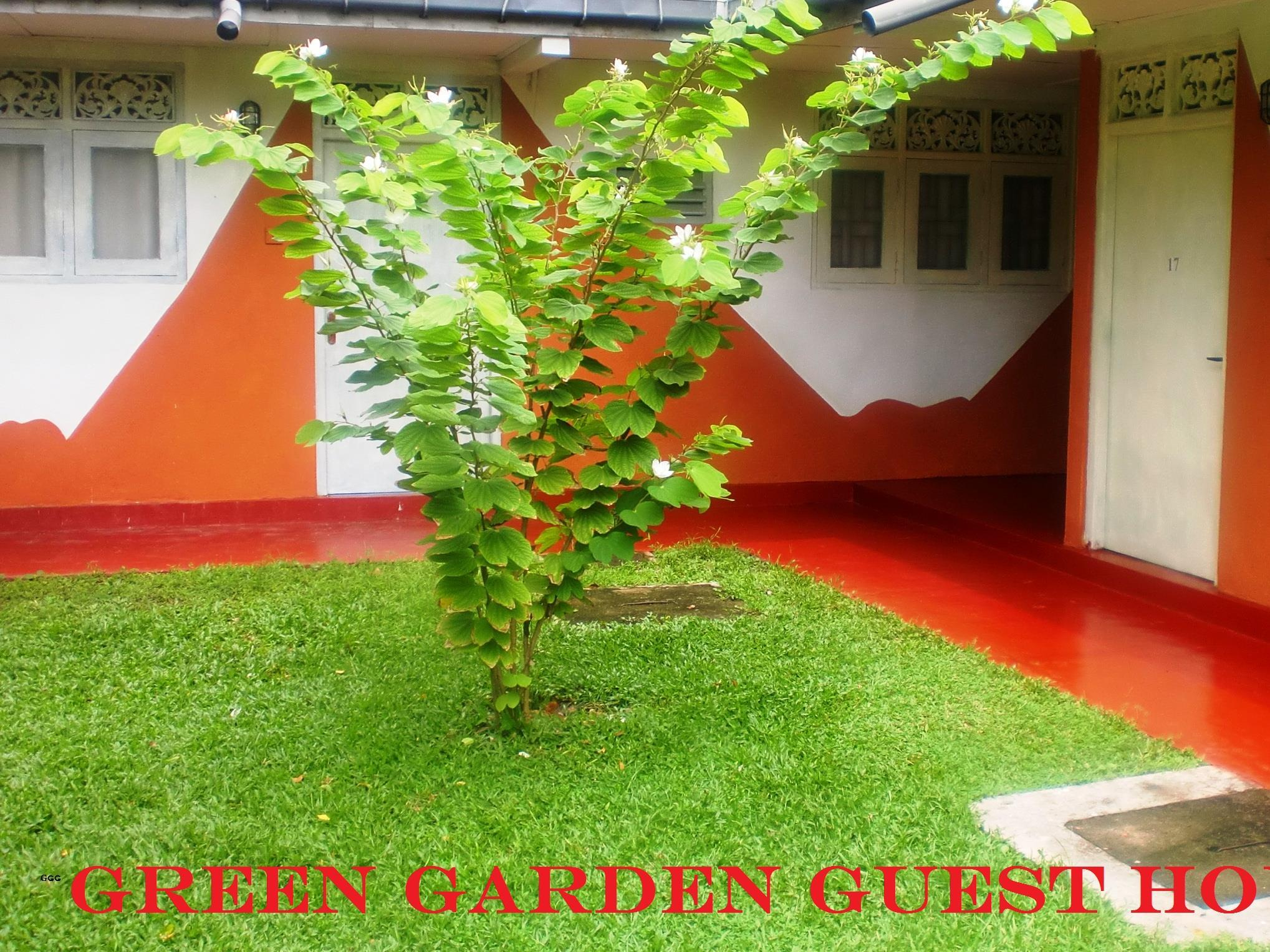 Green Garden Guest House - Hotels and Accommodation in Sri Lanka, Asia