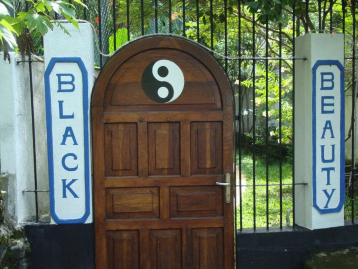 Black Beauty Guesthouse - Hotels and Accommodation in Sri Lanka, Asia