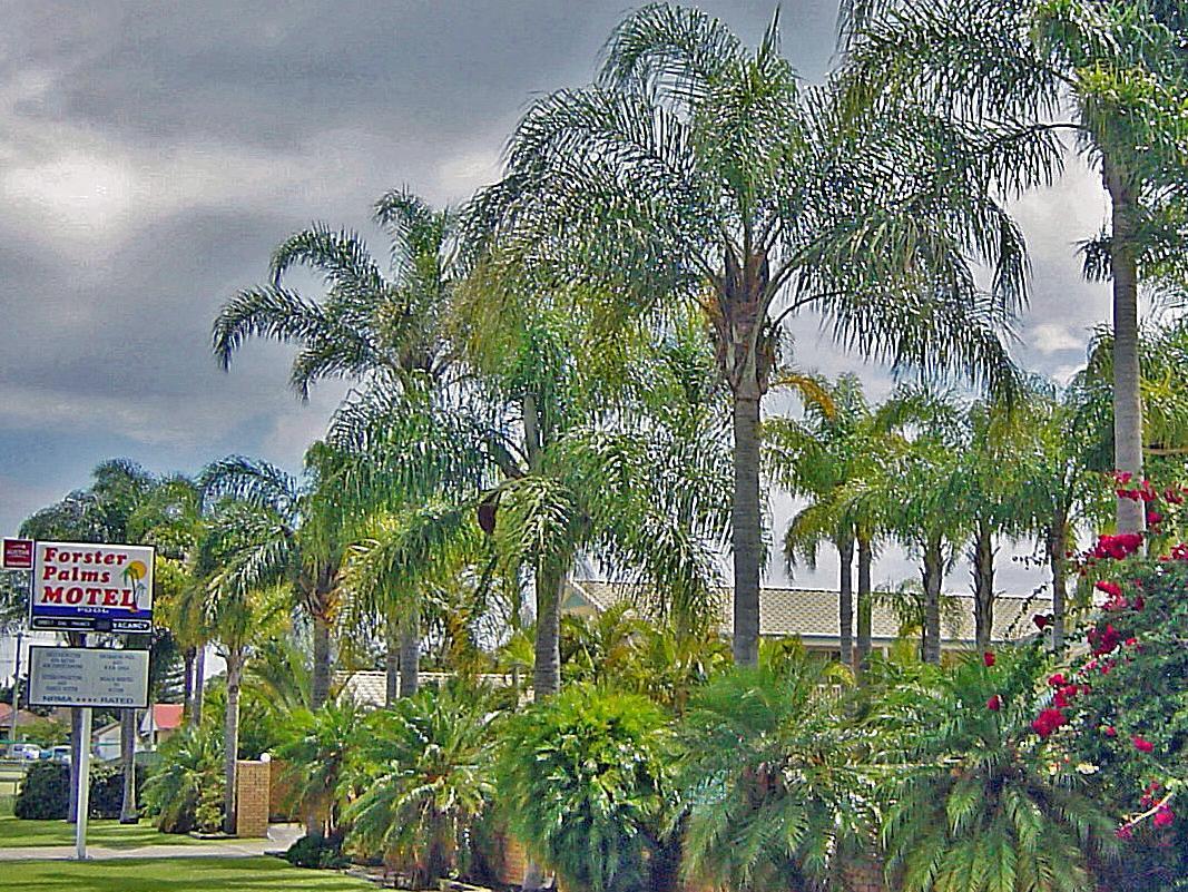 Forster Palms Motel - Hotell och Boende i Australien , Forster