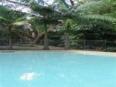 Rainforest Holiday Village Sunshine Coast - Swimming Pool
