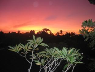 Desak Putu Putera Homestay Bali - Ympäristö