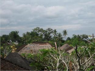 デサック プトゥ プテラ ホームステイ バリ島 - 景色
