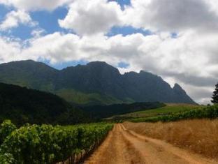 Knorhoek Country Guesthouse Stellenbosch - Vineyard View