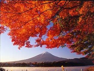Fuji Lake Hotel Mount Fuji - Fuji-san Autumn view