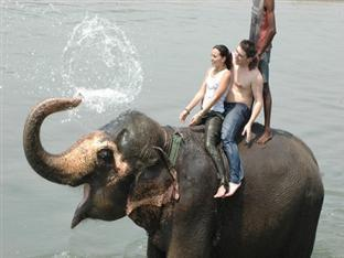 Rhino Lodge & Hotel Chitwan National Park - Elephant Bathing