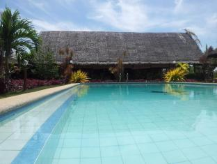 度假別墅卑爾撒酒店 保和島 - 游泳池