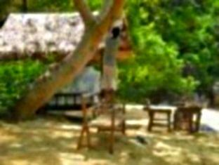 The Alternative Island Camping Site - Hotels and Accommodation in Philippines, Asia