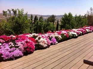 Jerusalem Of Gold Zimer Hotel Jerusalem - View