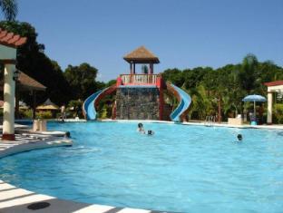 Hagnaya Beach Resort and Restaurant Cebu - Swimming Pool