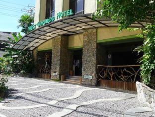 West Gorordo Hotel Cebu City - Permeable Meandering Pavement Driveway