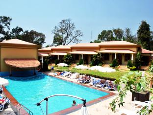 Cochichos Resort Goa Utara - Kolam renang