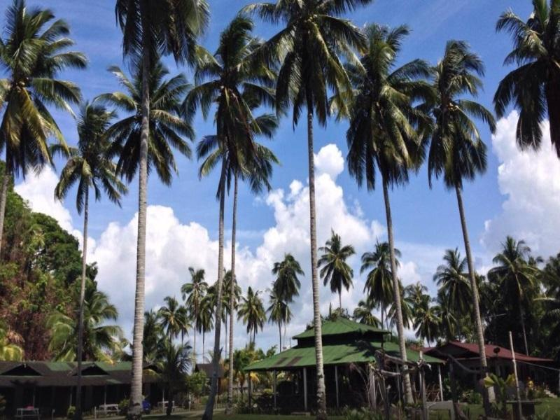 Fishing Bay Resort - Hotels and Accommodation in Malaysia, Asia
