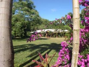 Hibiscus Lodge Bed & Breakfast 芙蓉酒店床和早餐 酒店