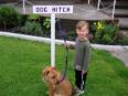Albany Holiday Park Albany - Dog Hitch