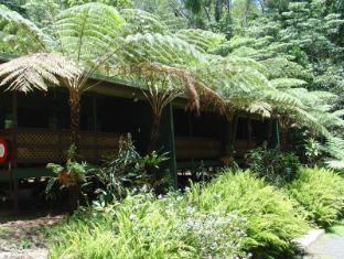 Chambers Wildlife Rainforest Lodges 卡萨科尔科瓦丛林洛吉酒店