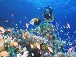 Orient Pearl Resort Puerto Galera - Activities: Scuba & Snorkeling