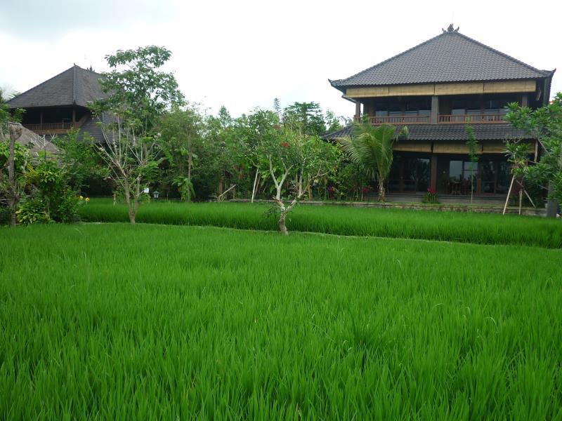 Hotell Bliss Spa Ubud Hotel