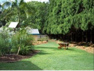 Coachman Motel Toowoomba - Garden
