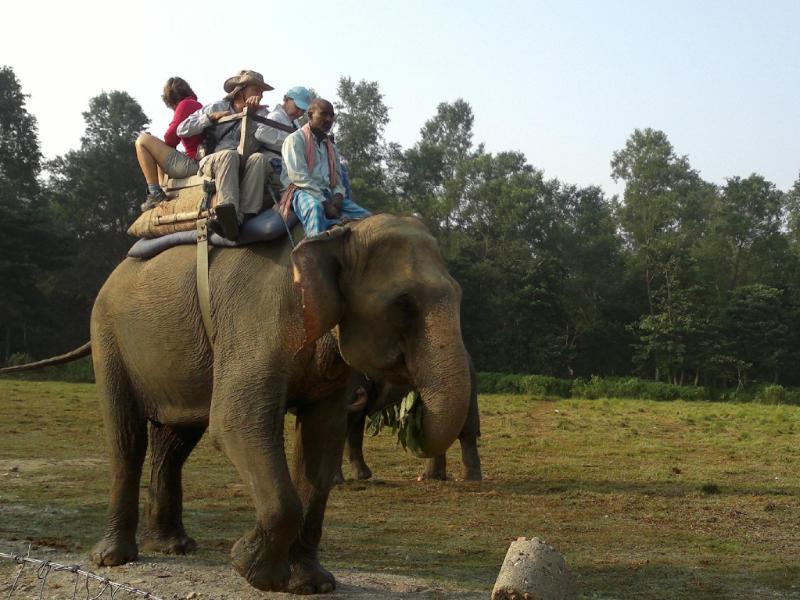 Sauraha Resort גן לאומי צ'יטובאן