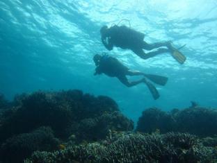 Dive Thru Scuba Resort Bohol - Sport şi activităţi