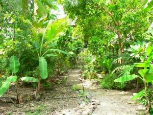 Isle of View Beach Resort And Guesthouse Bohol - Alentours