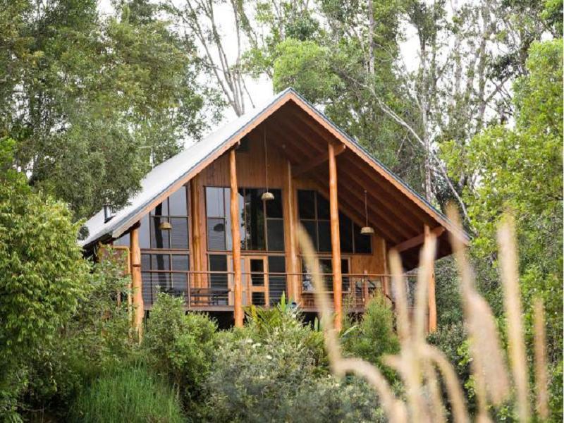 The Canopy Rainforest Treehouses - Hotell och Boende i Australien , Atherton Tablelands
